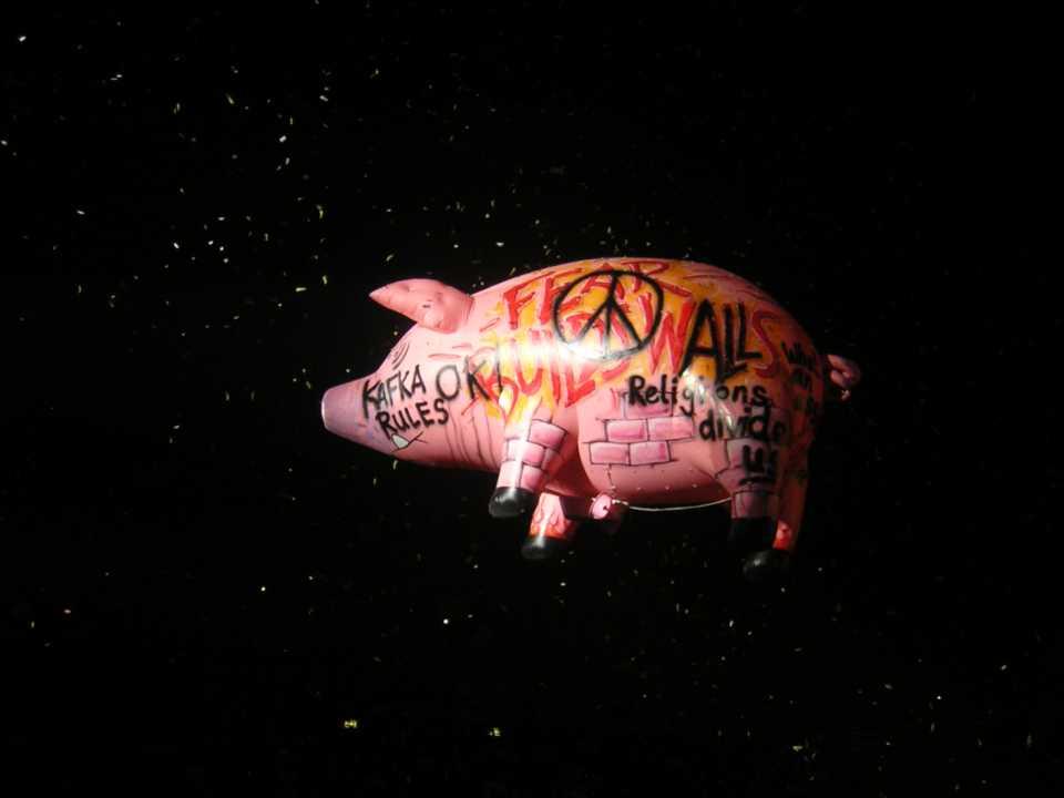 pink floyd pig roger waters