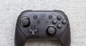 Nintendo Switch Pro Controller Steam