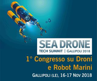 Sea drone